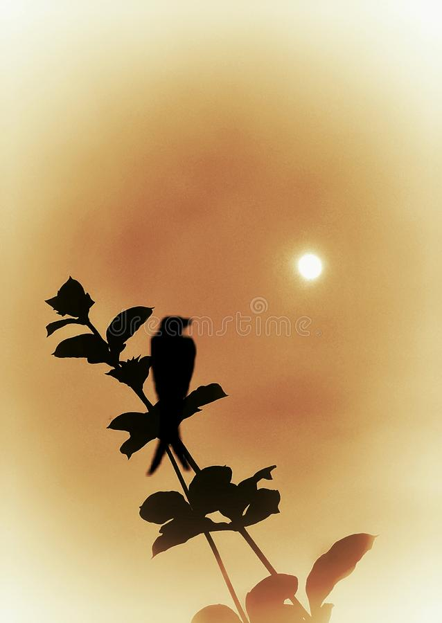 A small bird is sitting on the little branch and watching the moon. An illustrative image of a small black bird sitting on the tree branch and watching the moon royalty free illustration