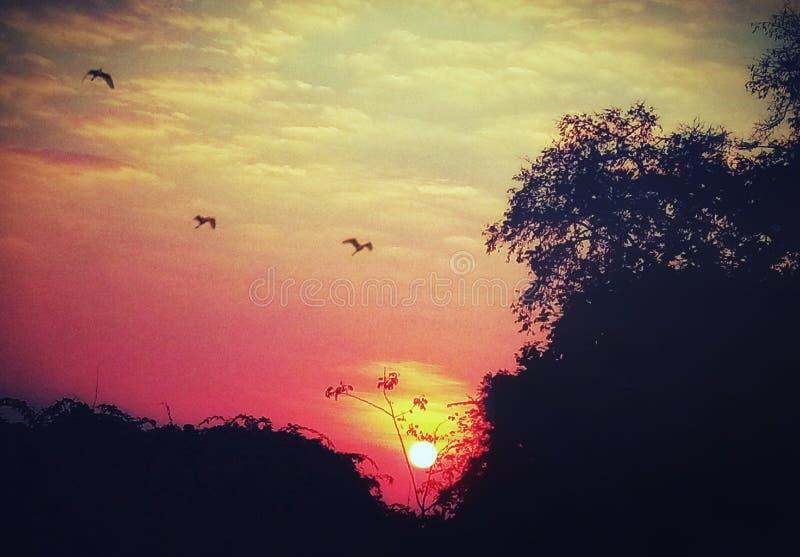 Illustrative wizerunek piękny wschód słońca Indiański lato royalty ilustracja