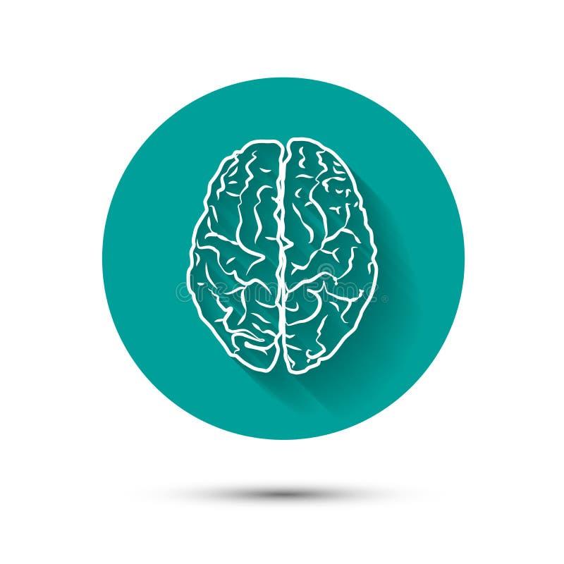 Illustraton piano dell'icona di vettore del cervello umano con illustrazione vettoriale