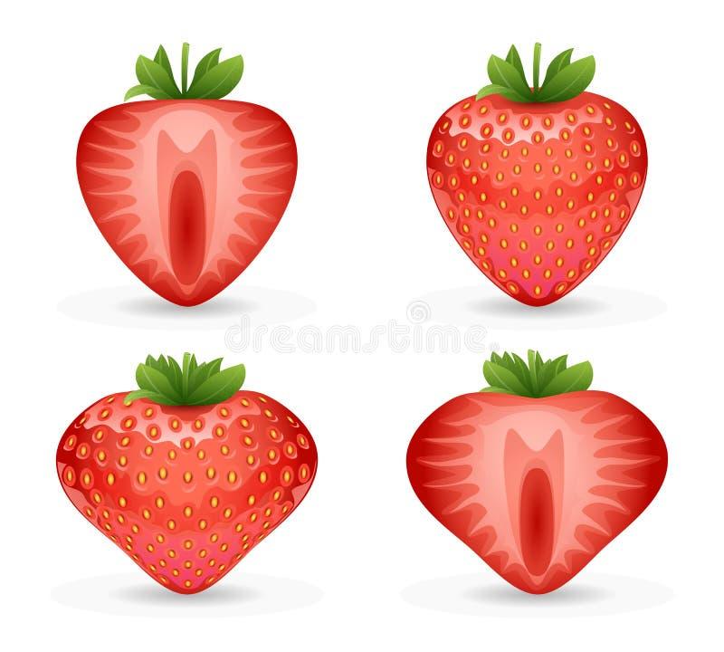 illustraton realistico di vettore della fragola di progettazione della frutta 3d illustrazione di stock