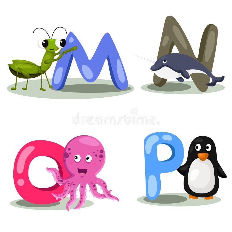 Illustrator alphabet animal LETTER - m,n,o,p. Cute and education vector illustration