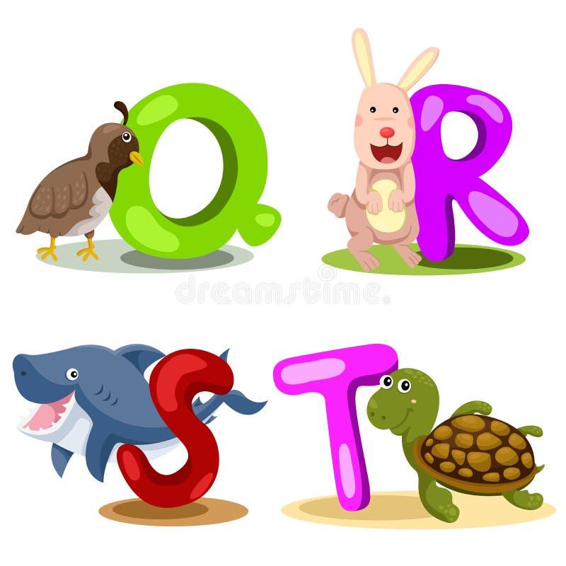 Illustrator alphabet animal LETTER - q,r,s,t. Cute and education royalty free illustration