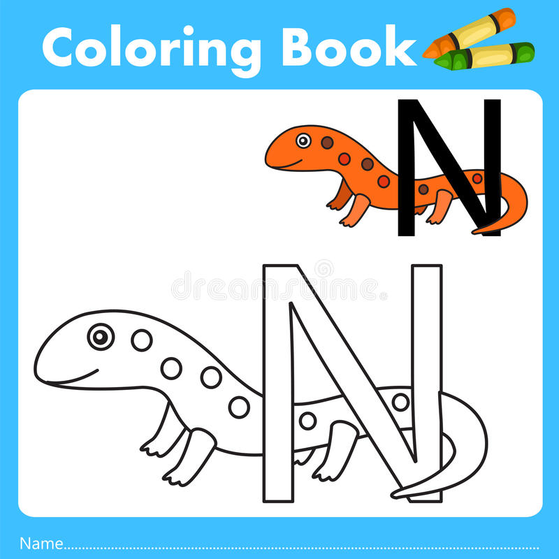 Illustrator of color book with newt animal. Isolated for education vector illustration