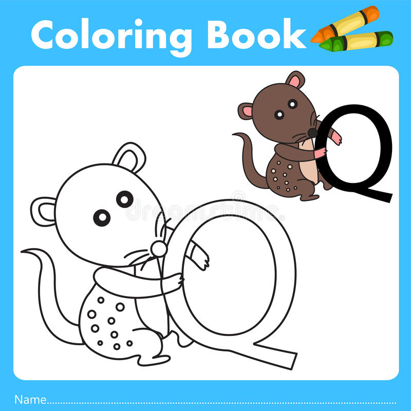 Illustrator of color book with quoll animal. Isolated for education stock illustration