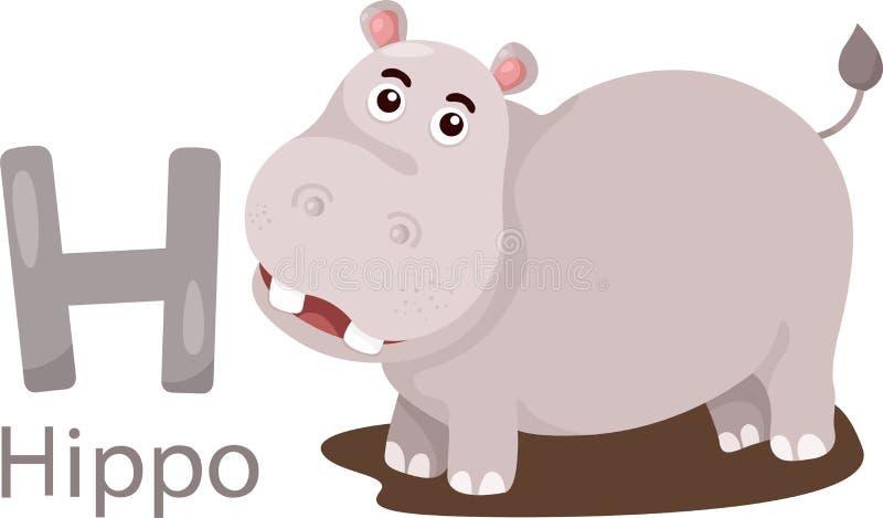 Illustrator de H con el hipopótamo ilustración del vector