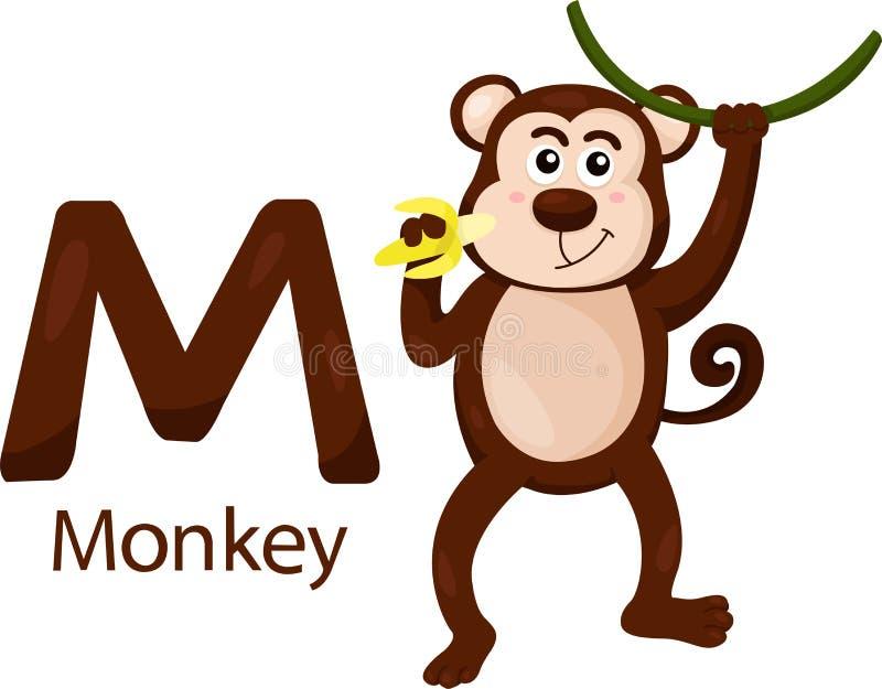Illustrator de M con el mono stock de ilustración
