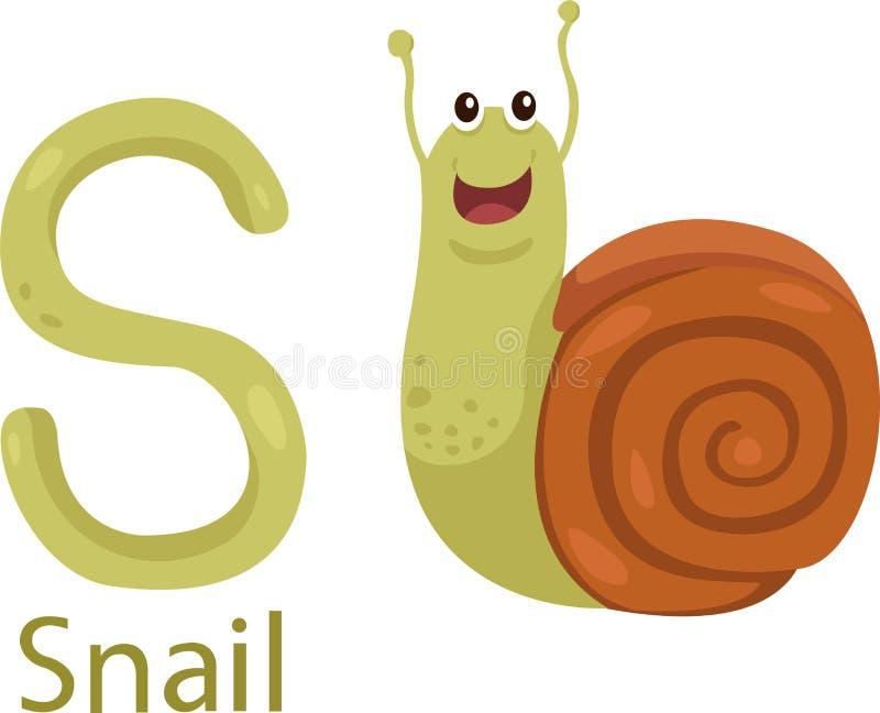 Illustrator de S con el caracol ilustración del vector