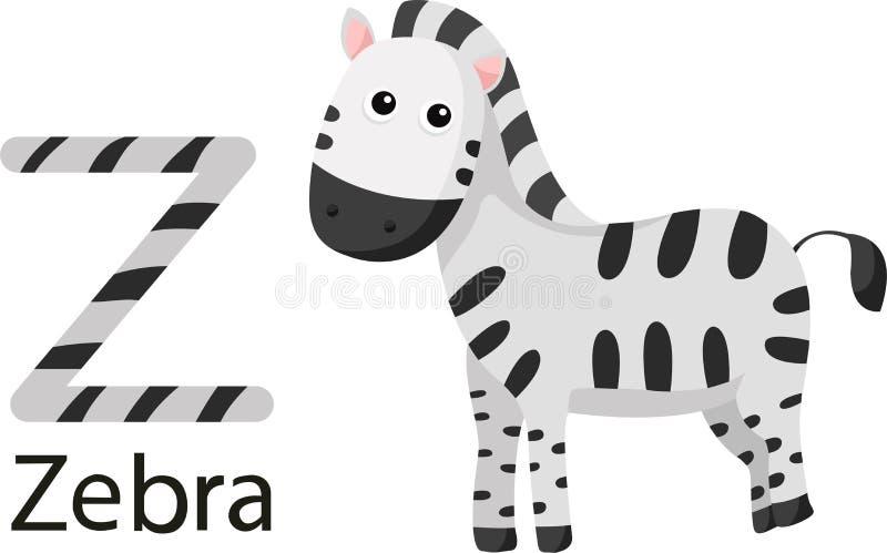 Illustrator de Z con la cebra ilustración del vector