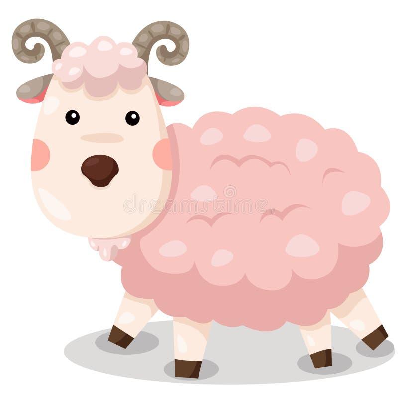 Illustrator del vector lindo de la cabra stock de ilustración
