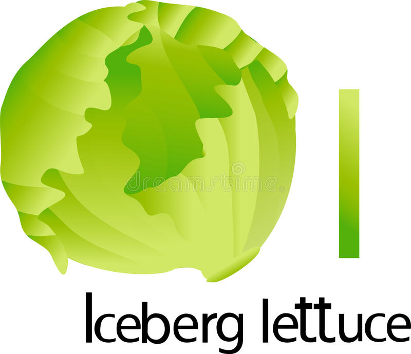illustrator i font with iceberg lettuce stock vector illustration rh dreamstime com