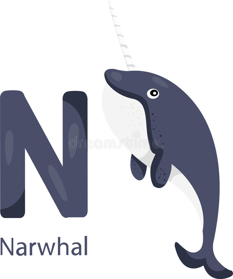Illustrator of N with narwhal. Vector font N with narwhal vector illustration