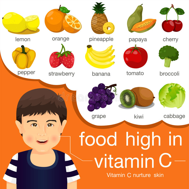 Illustrator van voedsel hoog in vitamine C stock illustratie
