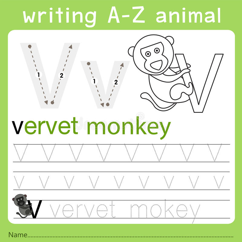 Illustrator of writing a-z animal v. Isolated for education vector illustration
