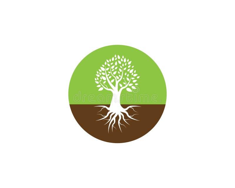 Illustratore del modello di vettore dell'icona dell'albero della natura illustrazione vettoriale