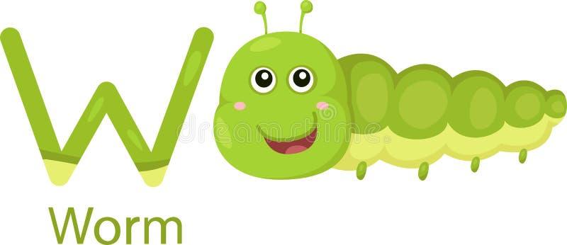 Illustratore di W con il verme illustrazione di stock
