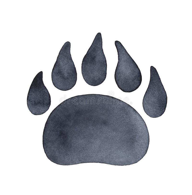 Illustrazione acquerella della stampa della zampa di orso immagine stock