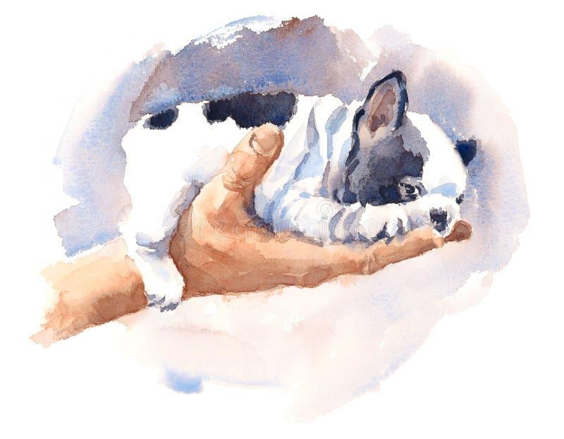 Illustrazione animale del bulldog del cucciolo dell'acquerello della razza sveglia del cane dipinta a mano illustrazione vettoriale