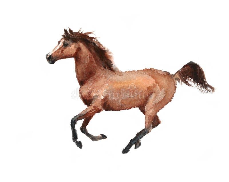 Illustrazione animale dell'acquerello corrente del cavallo dipinta a mano illustrazione vettoriale