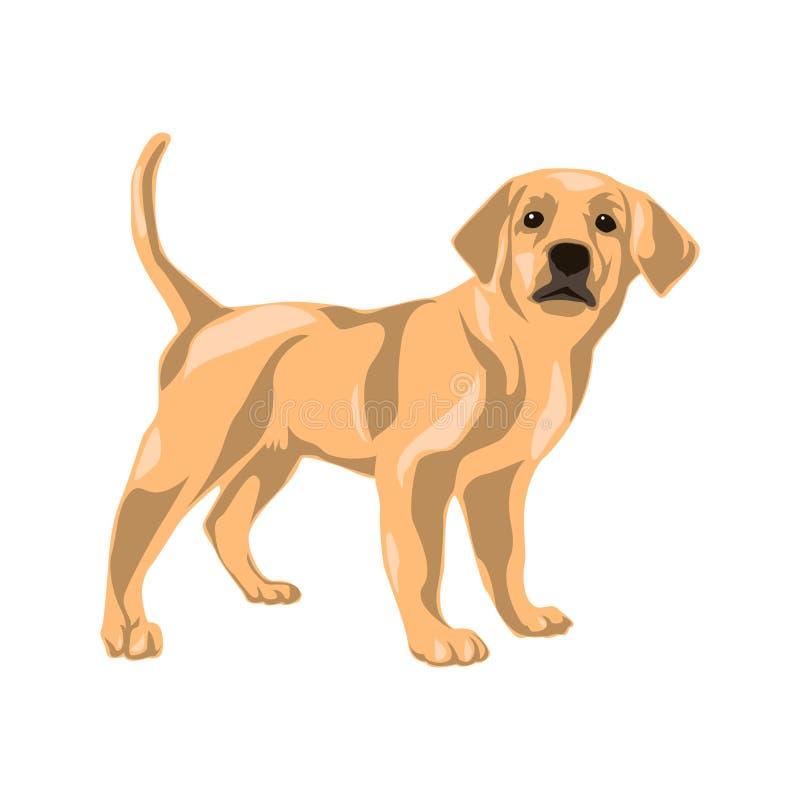 Illustrazione animale di clipart di vettore Illustrazione di vettore del cane illustrazione vettoriale