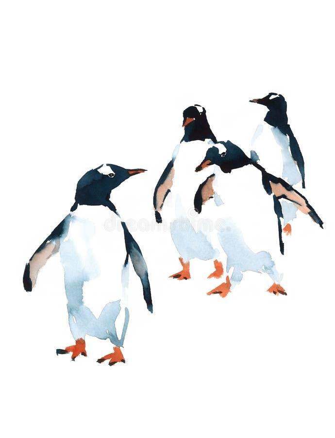 Illustrazione antartica degli uccelli dell'acquerello dei pinguini isolata su fondo bianco illustrazione di stock