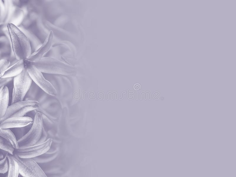 Illustrazione astratta del fondo del fiore illustrazione vettoriale