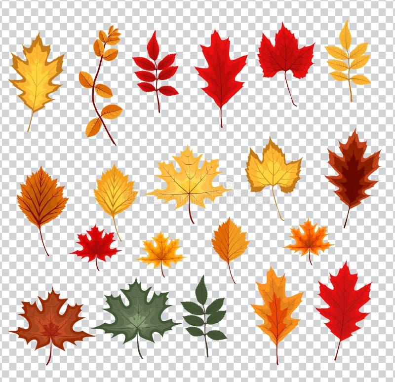 Illustrazione astratta di vettore con Autumn Leaves di caduta illustrazione vettoriale