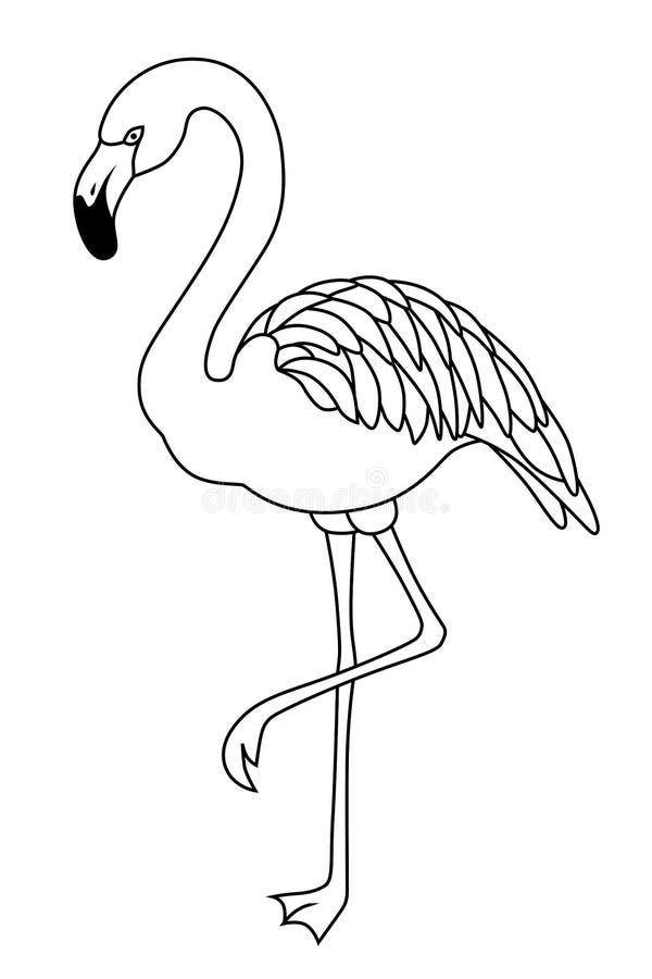 Illustrazione bianca nera dell'uccello del fenicottero illustrazione di stock