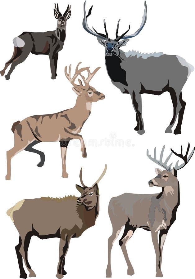 Illustrazione con i deers royalty illustrazione gratis