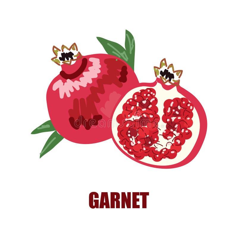 Illustrazione con l'immagine di un granato e di un granato in un taglio Logo o icona luminoso della frutta per la vostra progetta fotografia stock libera da diritti