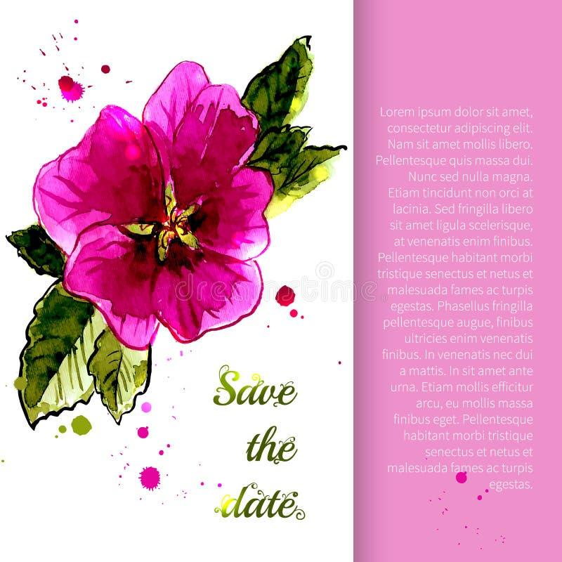 Illustrazione con la gambo-rosa dei fiori illustrazione vettoriale