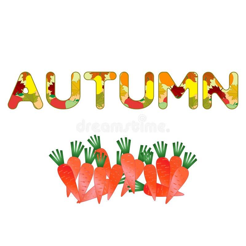Illustrazione con le carote Festival del raccolto royalty illustrazione gratis
