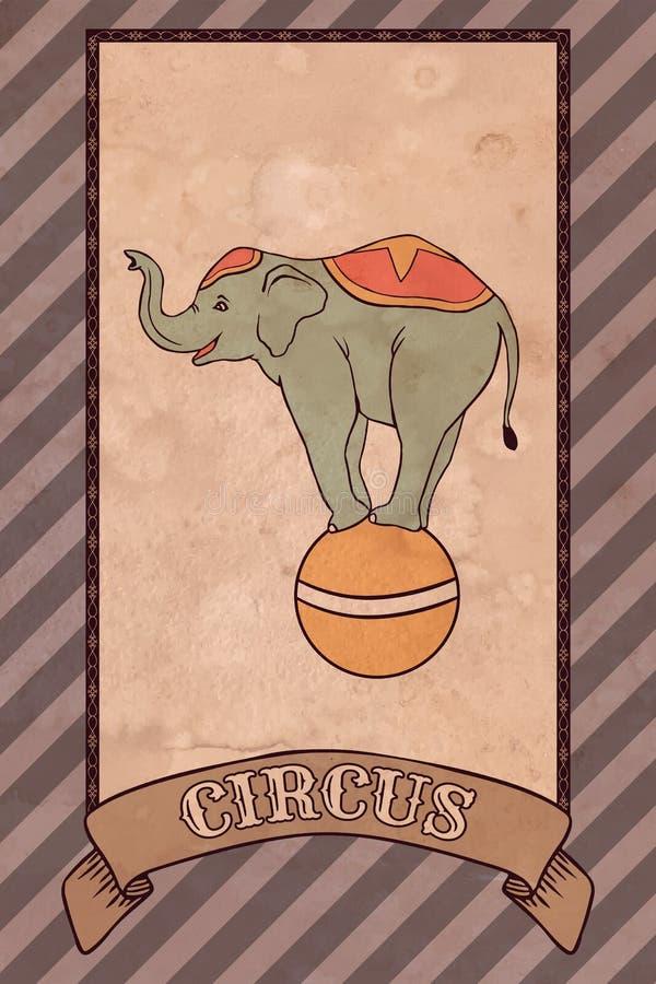 Illustrazione d'annata del circo, elefante illustrazione vettoriale