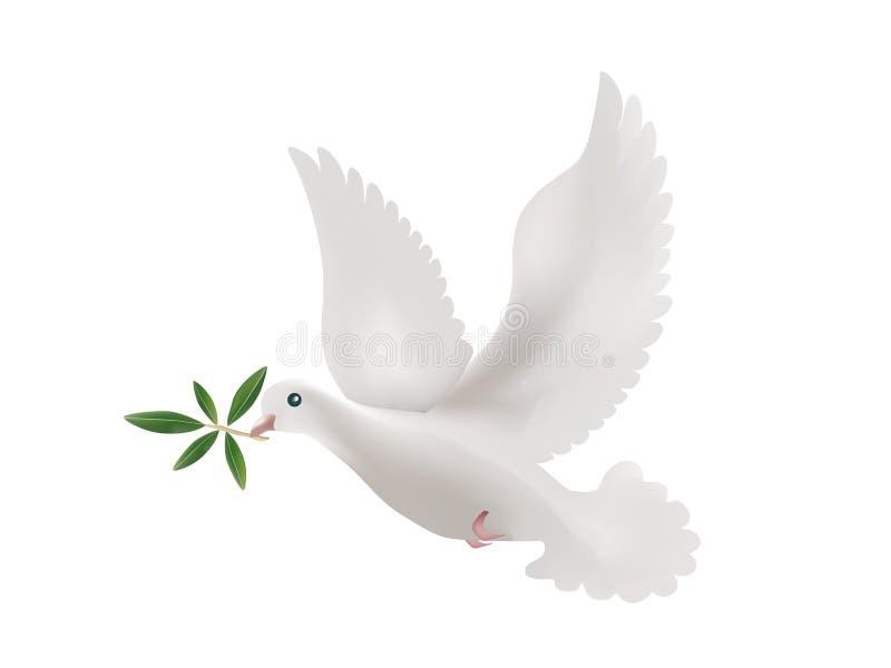 illustrazione 3d con le foglie isolate dell'oliva e della colomba Simbolo di pace illustrazione di stock