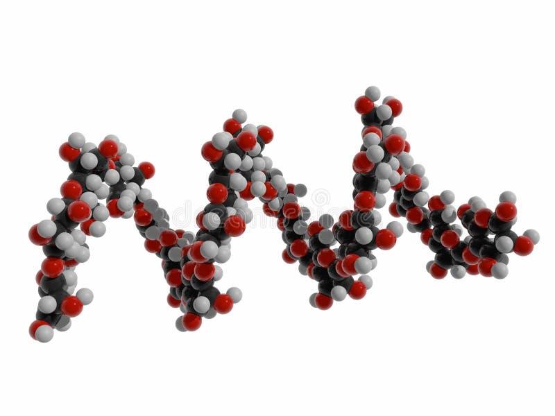 illustrazione 3d di amido, biomolecola elicoidale dell'amilosio, polimero organico delle unità secondarie del glucosio immagine stock libera da diritti
