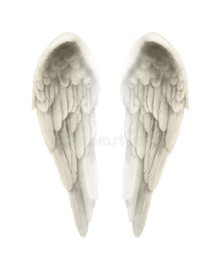 illustrazione 3d di Angel Wings Isolated su fondo bianco illustrazione vettoriale
