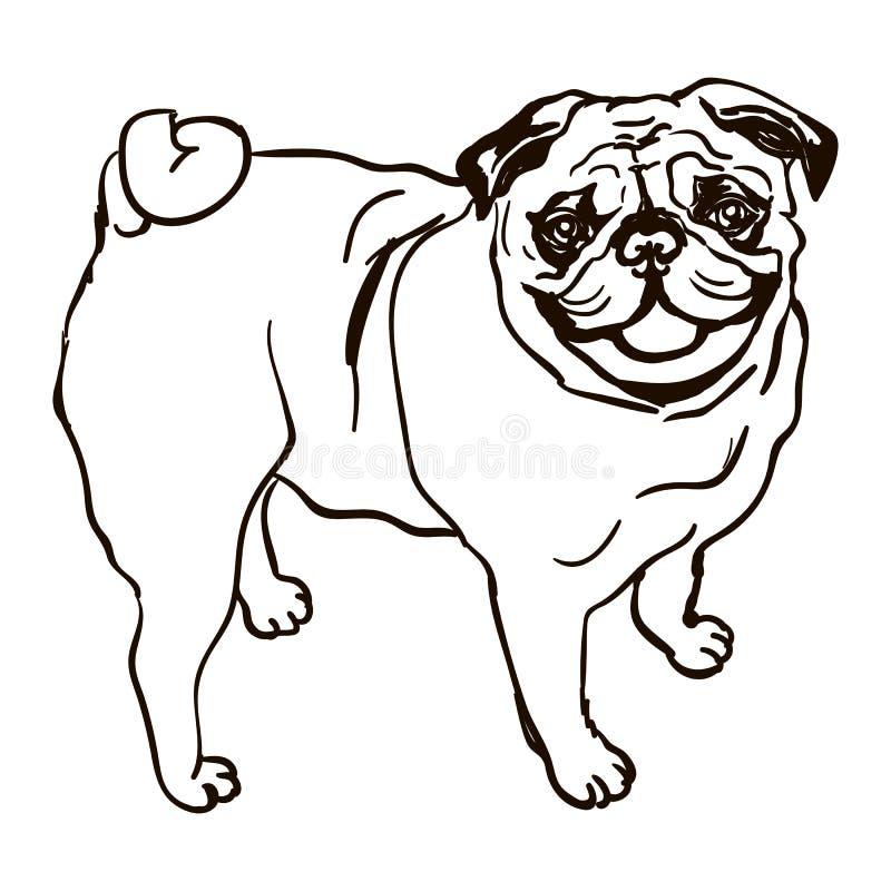 Illustrazione del carlino della razza del cane royalty illustrazione gratis