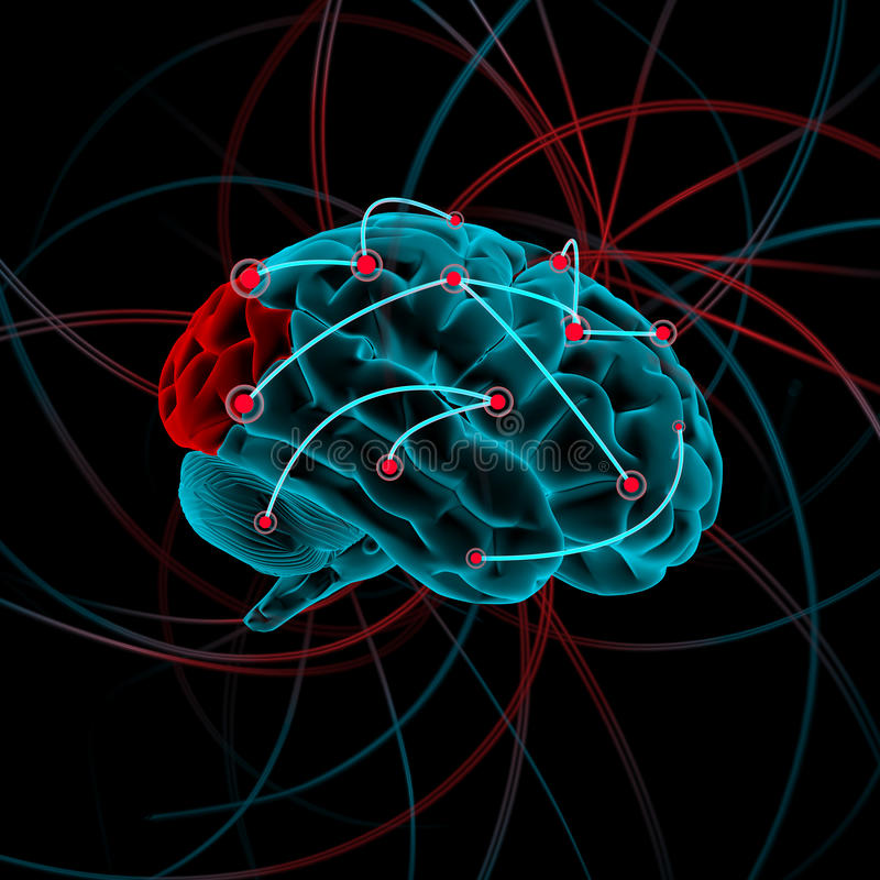 Illustrazione del cervello fotografie stock