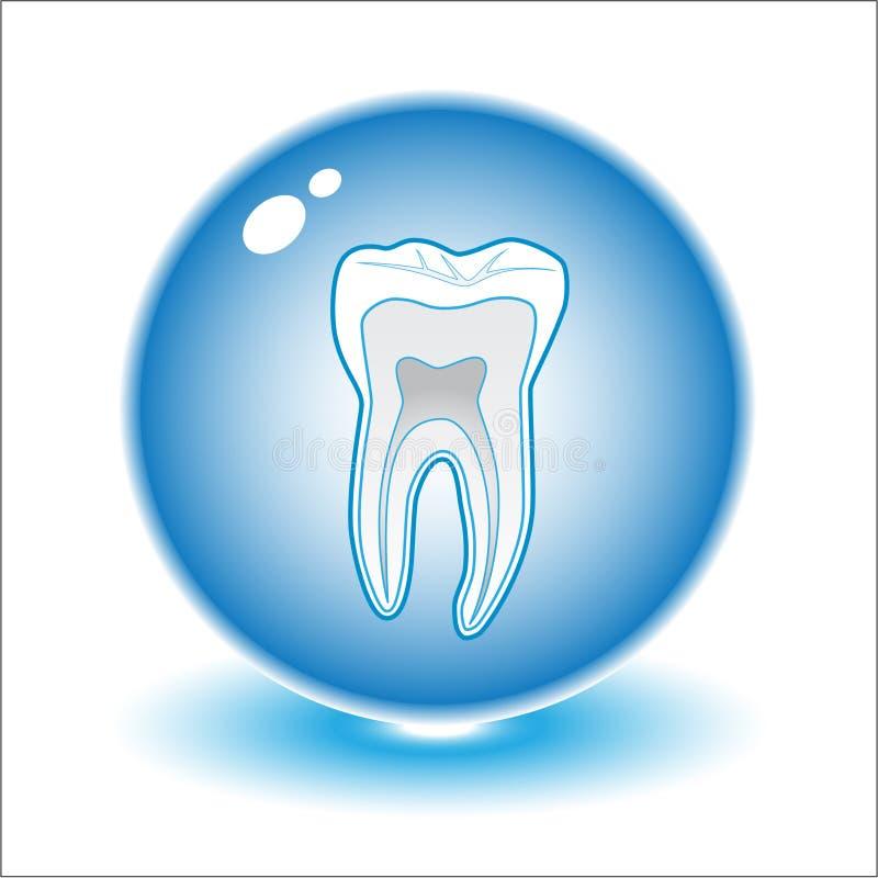 Illustrazione del dente di vettore royalty illustrazione gratis