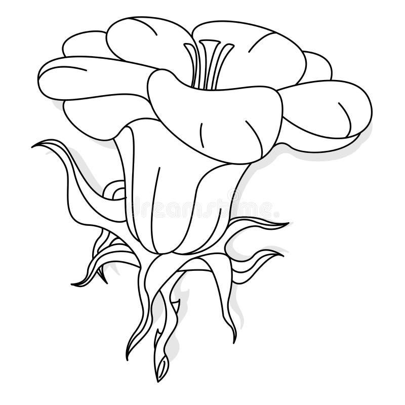 Illustrazione del fiore di fantasia messa su bianco illustrazione vettoriale