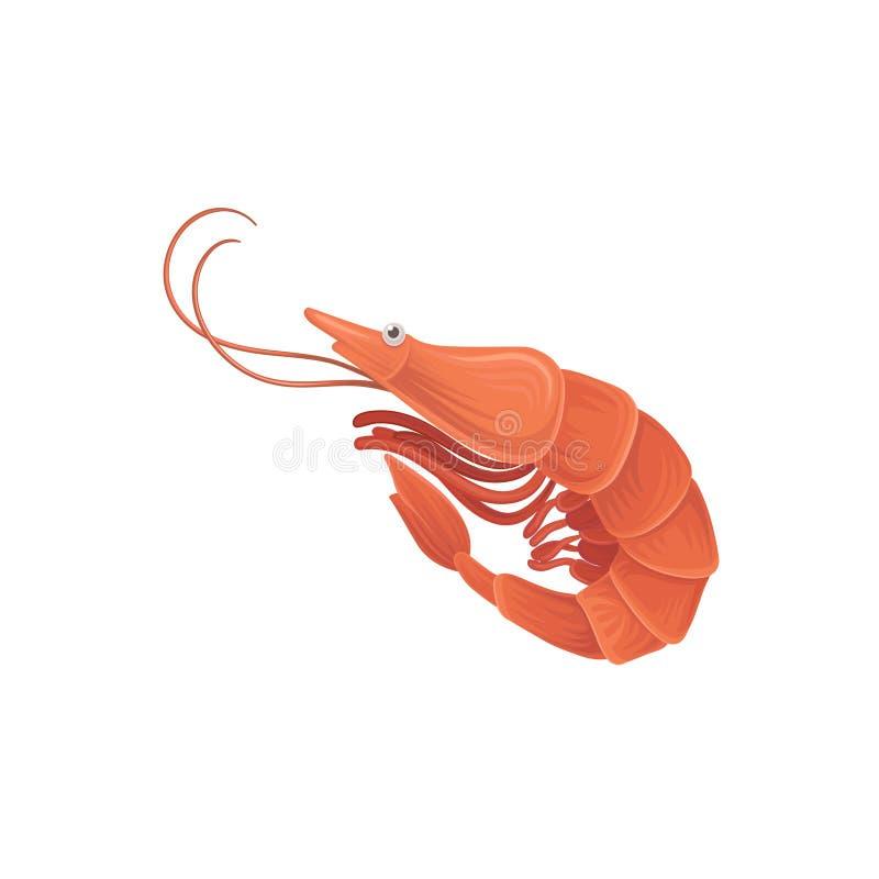 Illustrazione del fumetto con il gamberetto del mare nello stile piano Frutti di mare gastronomici saporiti Elemento di progettaz illustrazione di stock