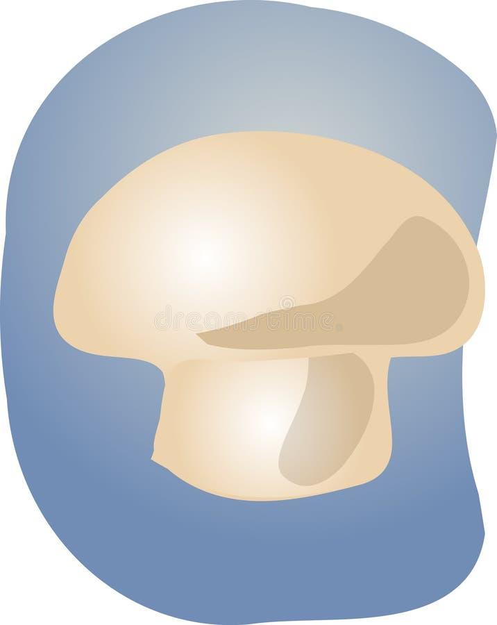 Download Illustrazione del fungo illustrazione vettoriale. Illustrazione di mano - 7319777
