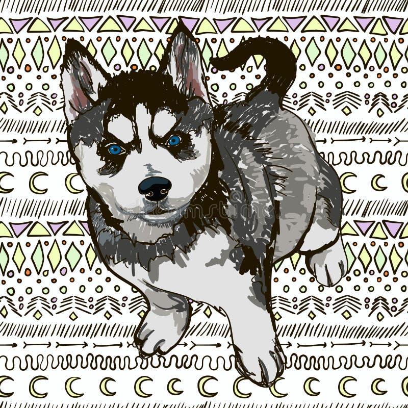 Illustrazione del husky della razza del cane illustrazione vettoriale