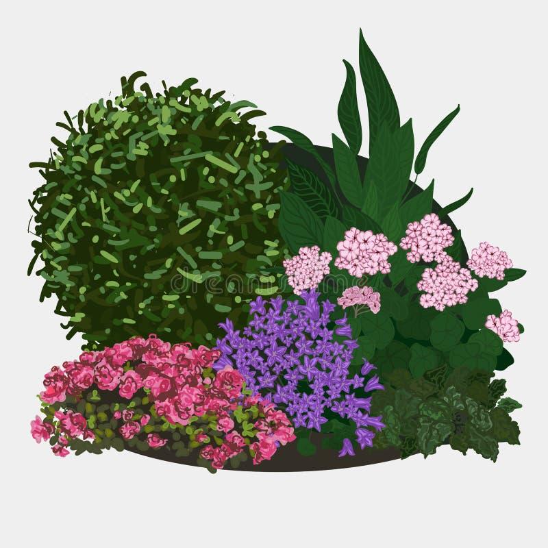 Illustrazione del letto di fiore del giardino illustrazione di stock