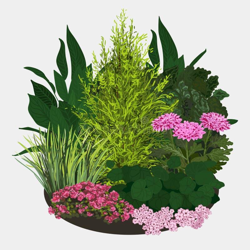 Illustrazione del letto di fiore del giardino royalty illustrazione gratis
