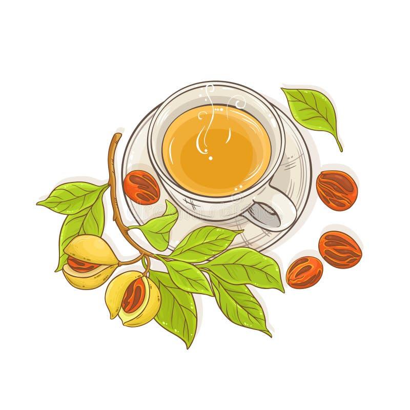 Illustrazione del tè della noce moscata illustrazione vettoriale