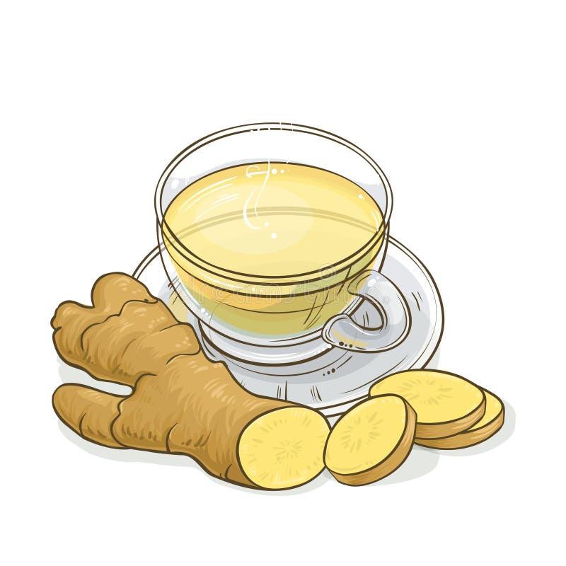 Illustrazione del tè dello zenzero illustrazione di stock