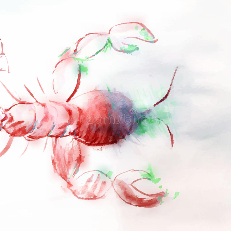 Illustrazione dell'acquerello dei gamberi rossi illustrazione di stock
