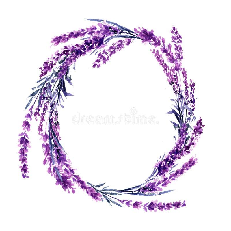 Illustrazione dell'acquerello della corona del fiore della lavanda royalty illustrazione gratis