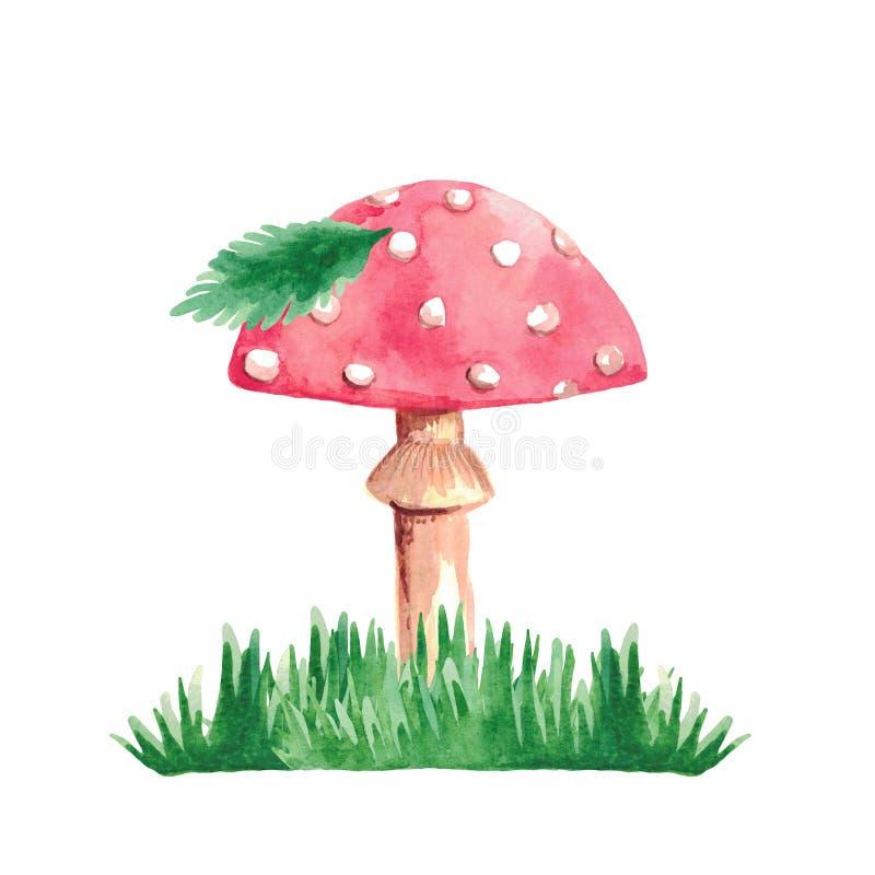Illustrazione dell'acquerello della foglia dell'erba di verde dell'agarico di mosca del fungo sugli elementi dipinti a mano isola fotografie stock