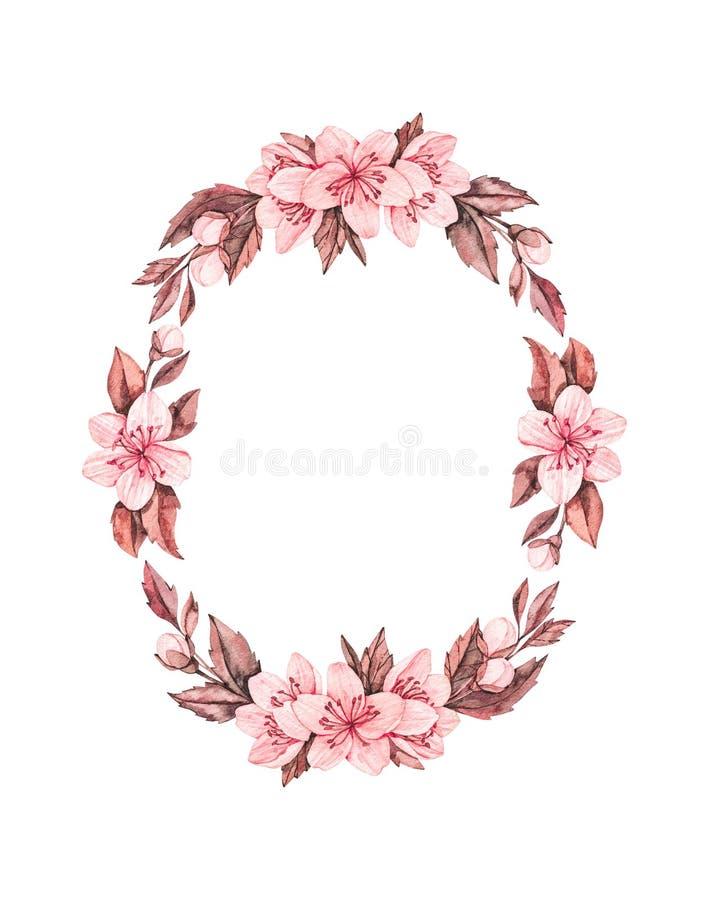 Illustrazione dell'acquerello della primavera Fioritura di Sakura Ciliegia Corona botanica con i fiori e le foglie rosa Elementi  illustrazione di stock